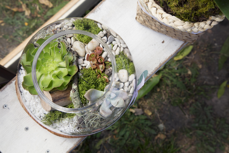 Stunning Garden | Dear Delilah Florist, Latrobe Valley